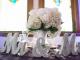wedding hashtag ideas sayings puns