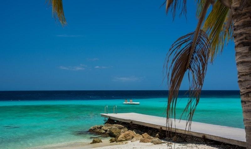 tropical beach setting