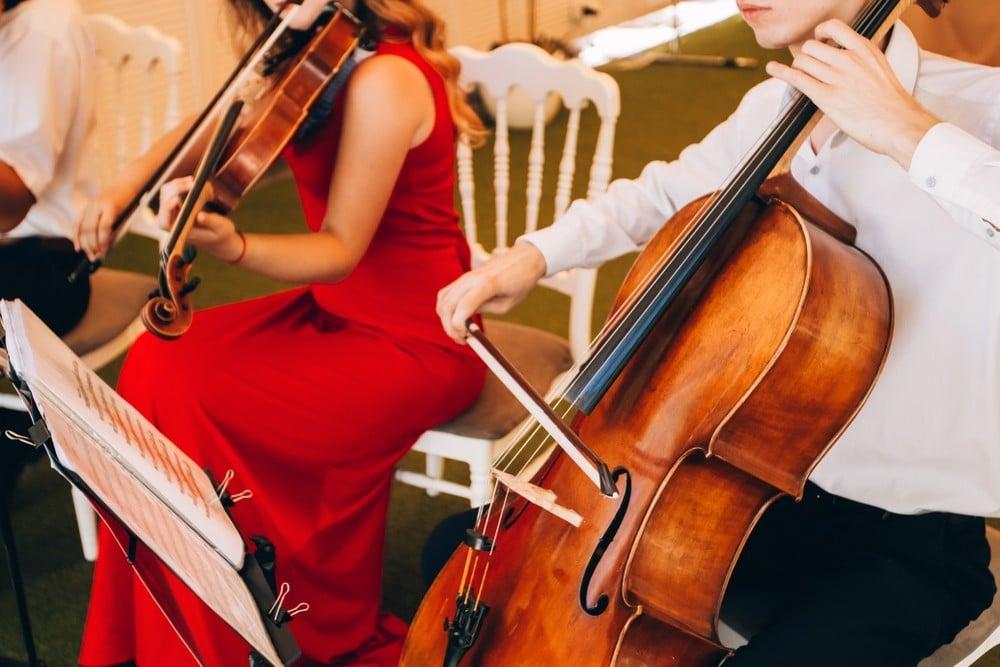 live string instruments